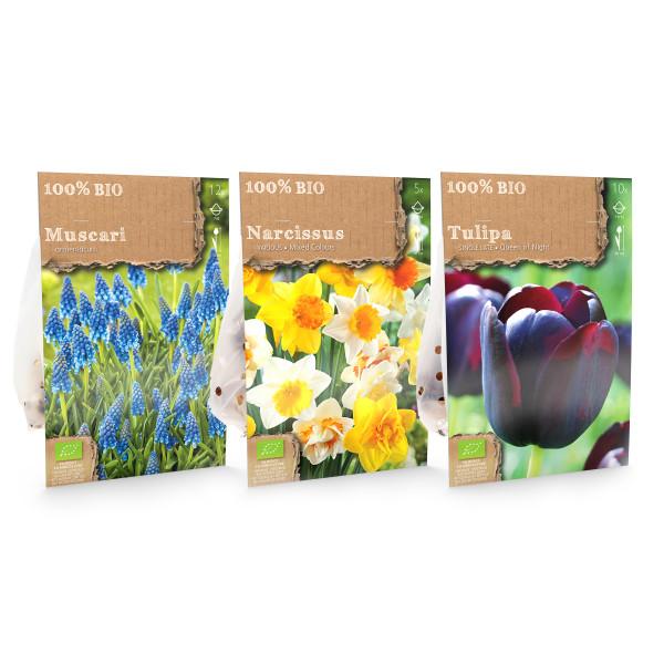 Bio-Frühlingsblumen